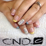 Shellac Chester